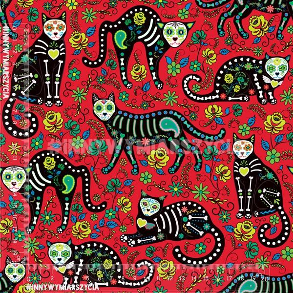 crna i meksička maca škljocati na mene